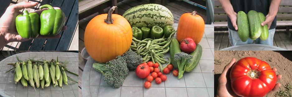 Eric's Organic Gardening Blog